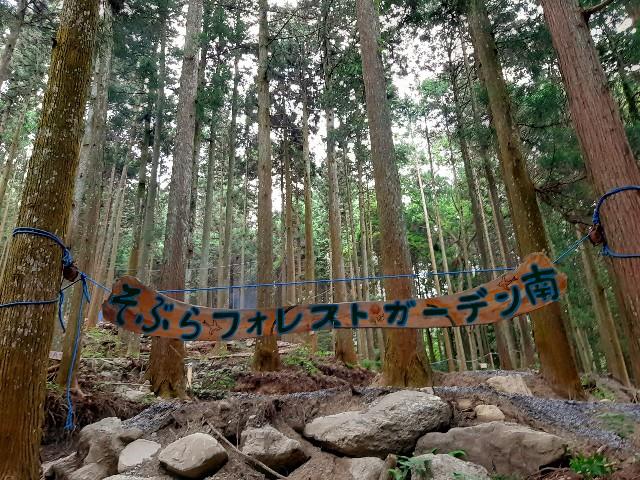 f:id:tatsumitatsu:20210626212006j:image