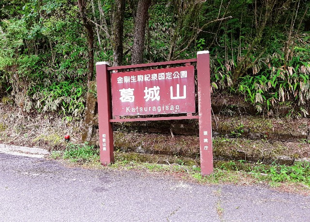 f:id:tatsumitatsu:20210626231221j:image