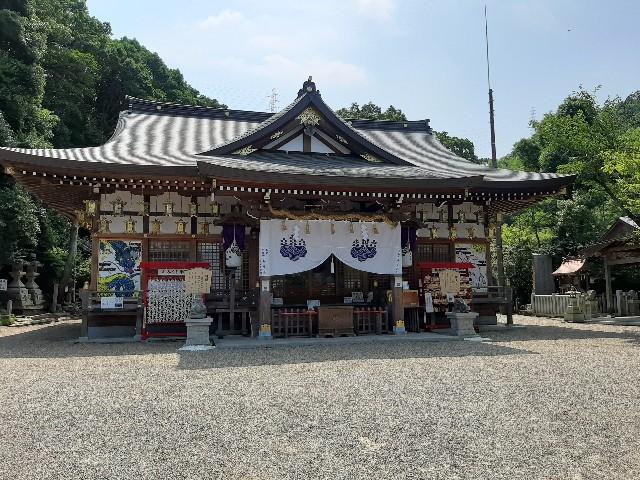 f:id:tatsumitatsu:20210711173016j:image