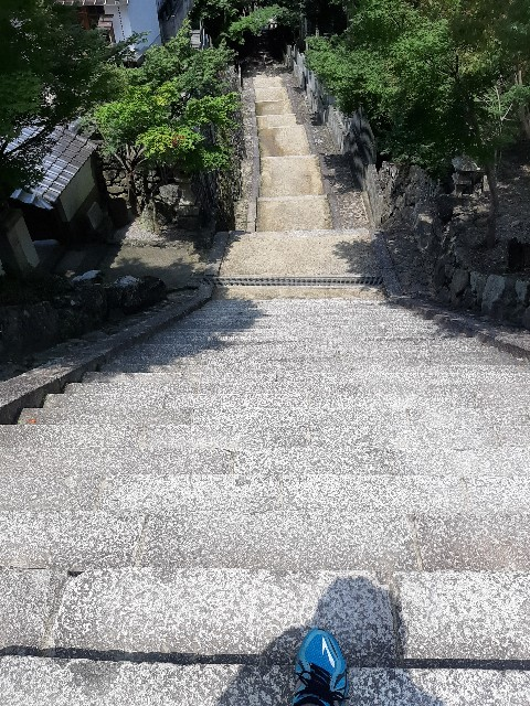 f:id:tatsumitatsu:20210711174931j:image