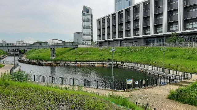 f:id:tatsumitatsu:20210712092801j:image