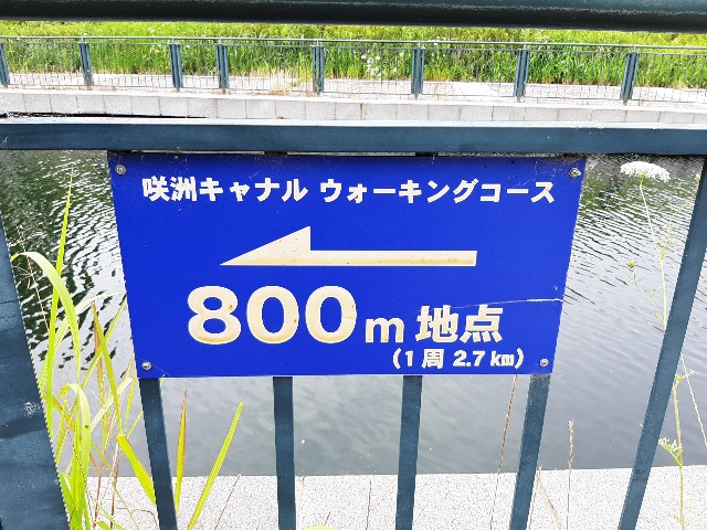 f:id:tatsumitatsu:20210712103326j:image