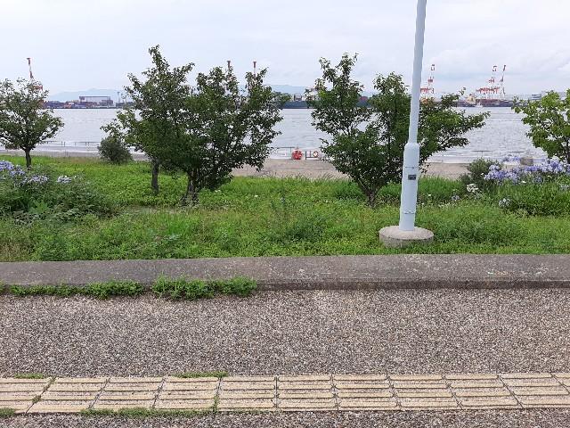 f:id:tatsumitatsu:20210712131030j:image