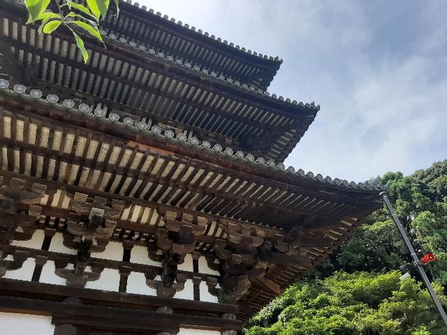 f:id:tatsumitatsu:20210723220105j:image
