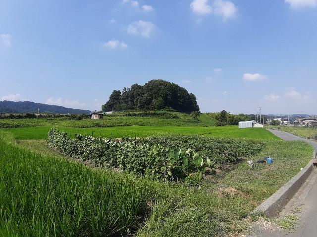 f:id:tatsumitatsu:20210731225748j:image