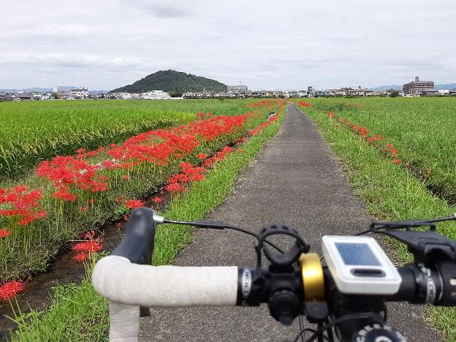 f:id:tatsumitatsu:20210920102008j:image