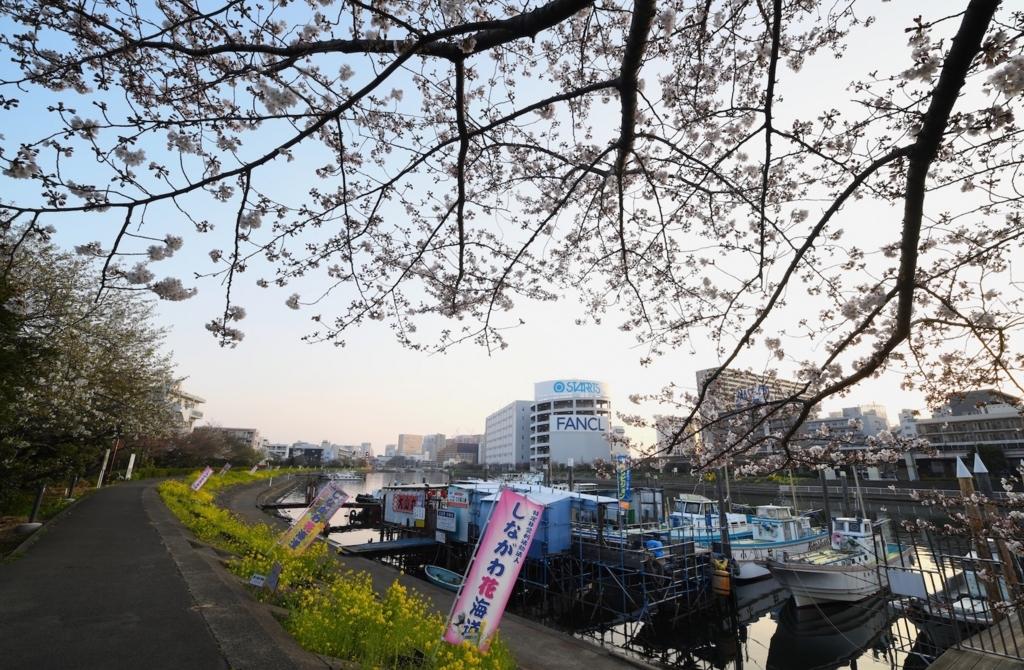f:id:tatsumo77:20180331135311j:plain