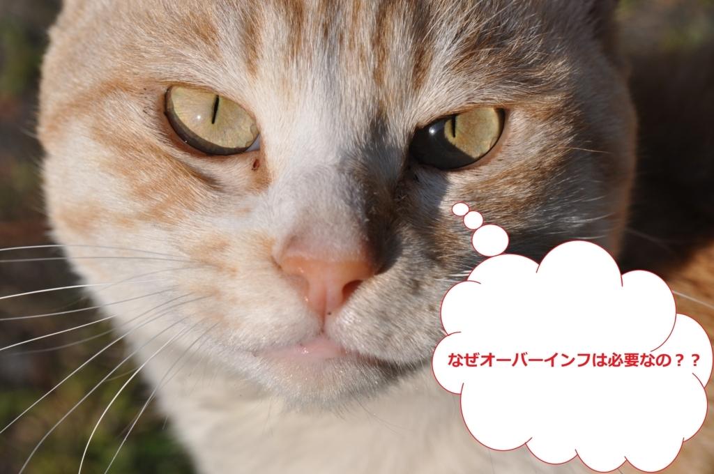 f:id:tatsumo77:20180513144952j:plain