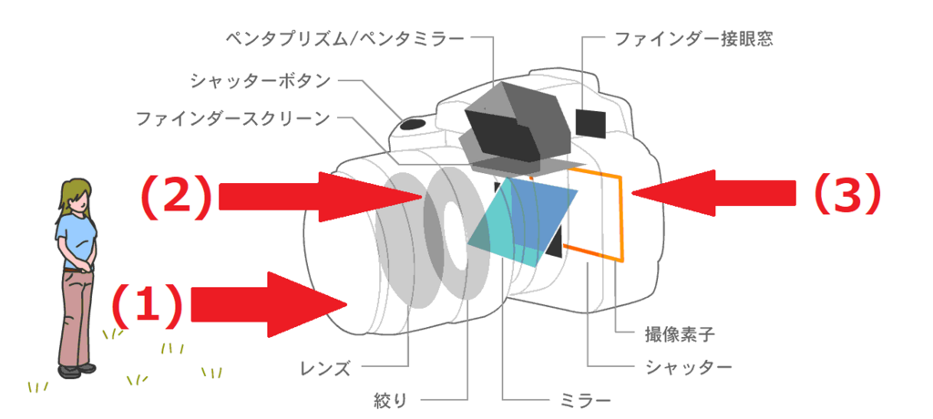 f:id:tatsumo77:20180523013814p:plain