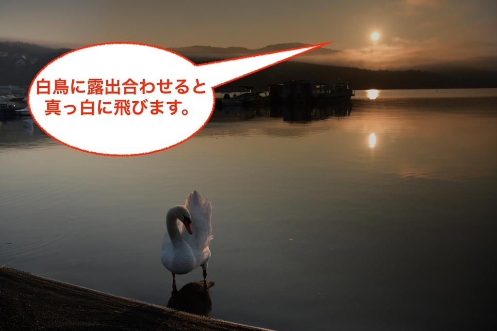 f:id:tatsumo77:20181008145221j:plain
