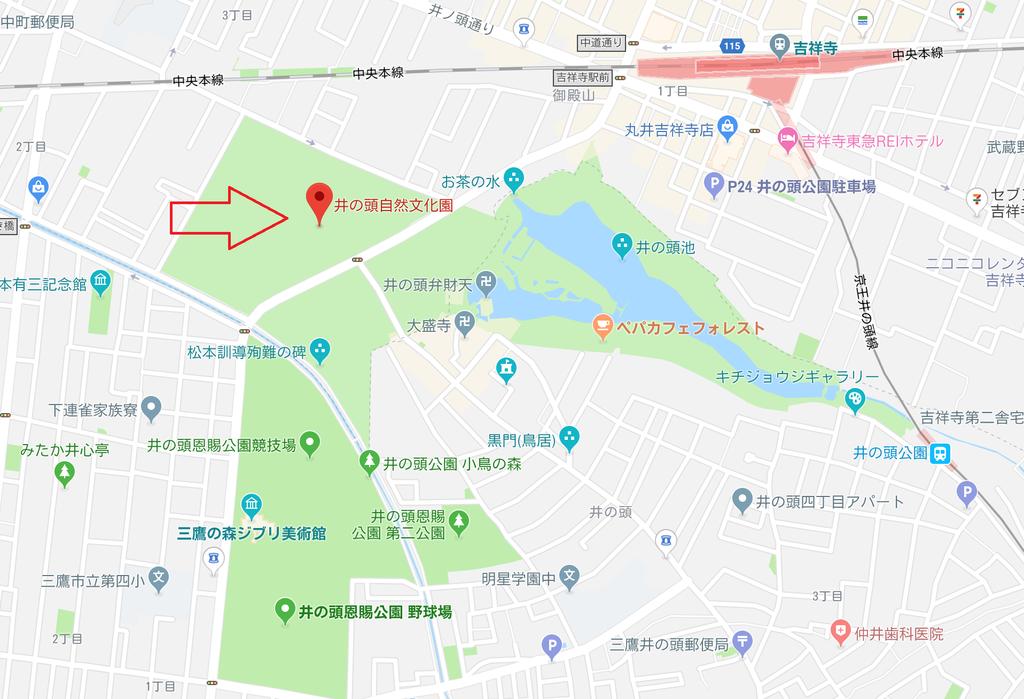 f:id:tatsumo77:20181024010115p:plain