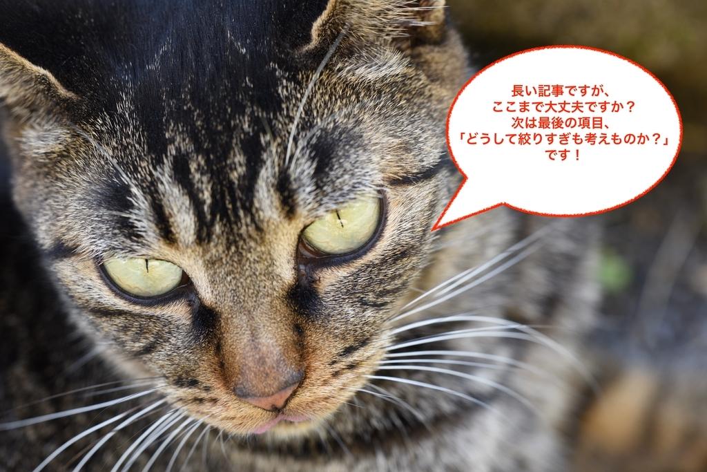 f:id:tatsumo77:20181118180508j:plain