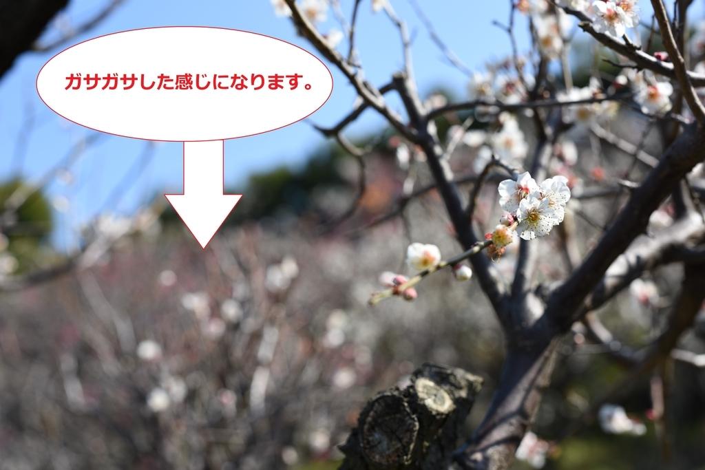 f:id:tatsumo77:20181215121556j:plain
