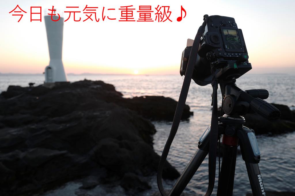 f:id:tatsumo77:20190202135134p:plain