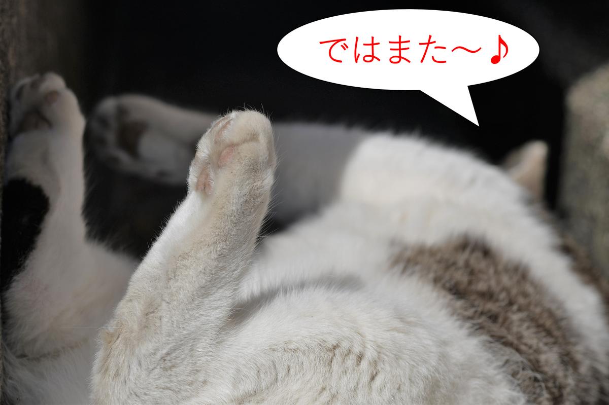 f:id:tatsumo77:20190319170707p:plain