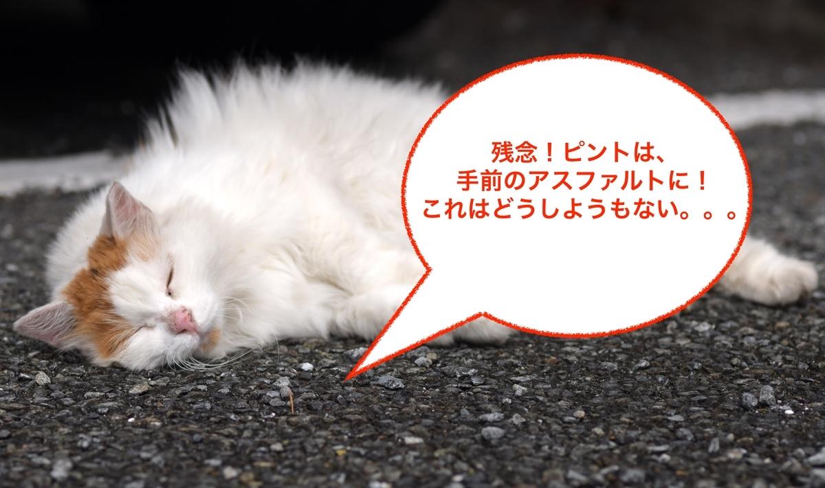 f:id:tatsumo77:20190419213029j:plain