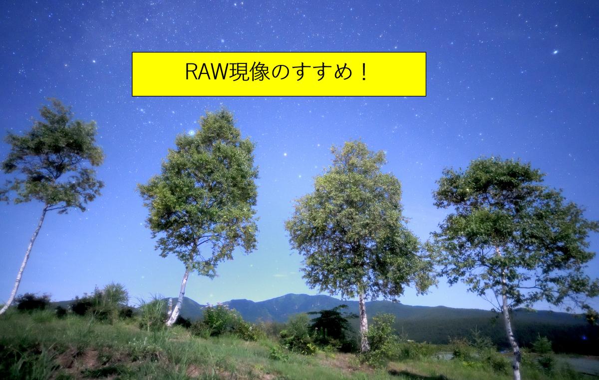 【初心者向け】RAW現像のすすめ ~写真は現場で完成させなくても良い~の画像