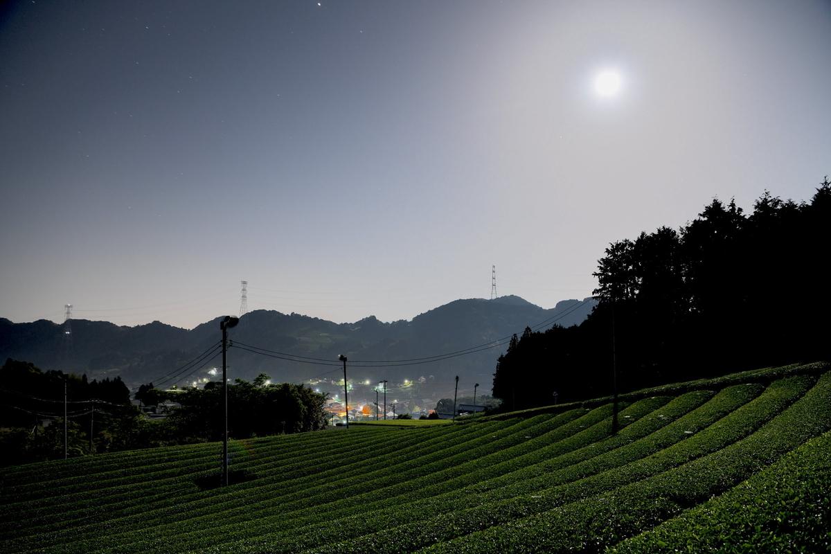 f:id:tatsumo77:20190906161818j:plain