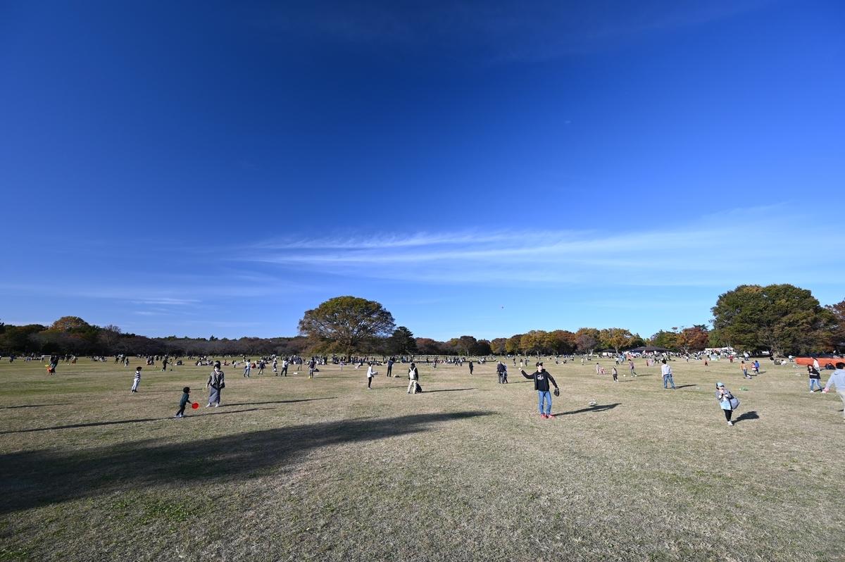 f:id:tatsumo77:20191124163018j:plain