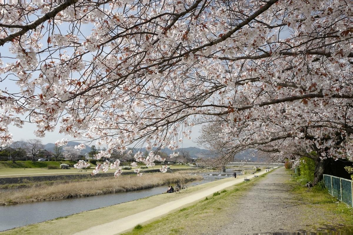 f:id:tatsumo77:20200409083532j:plain