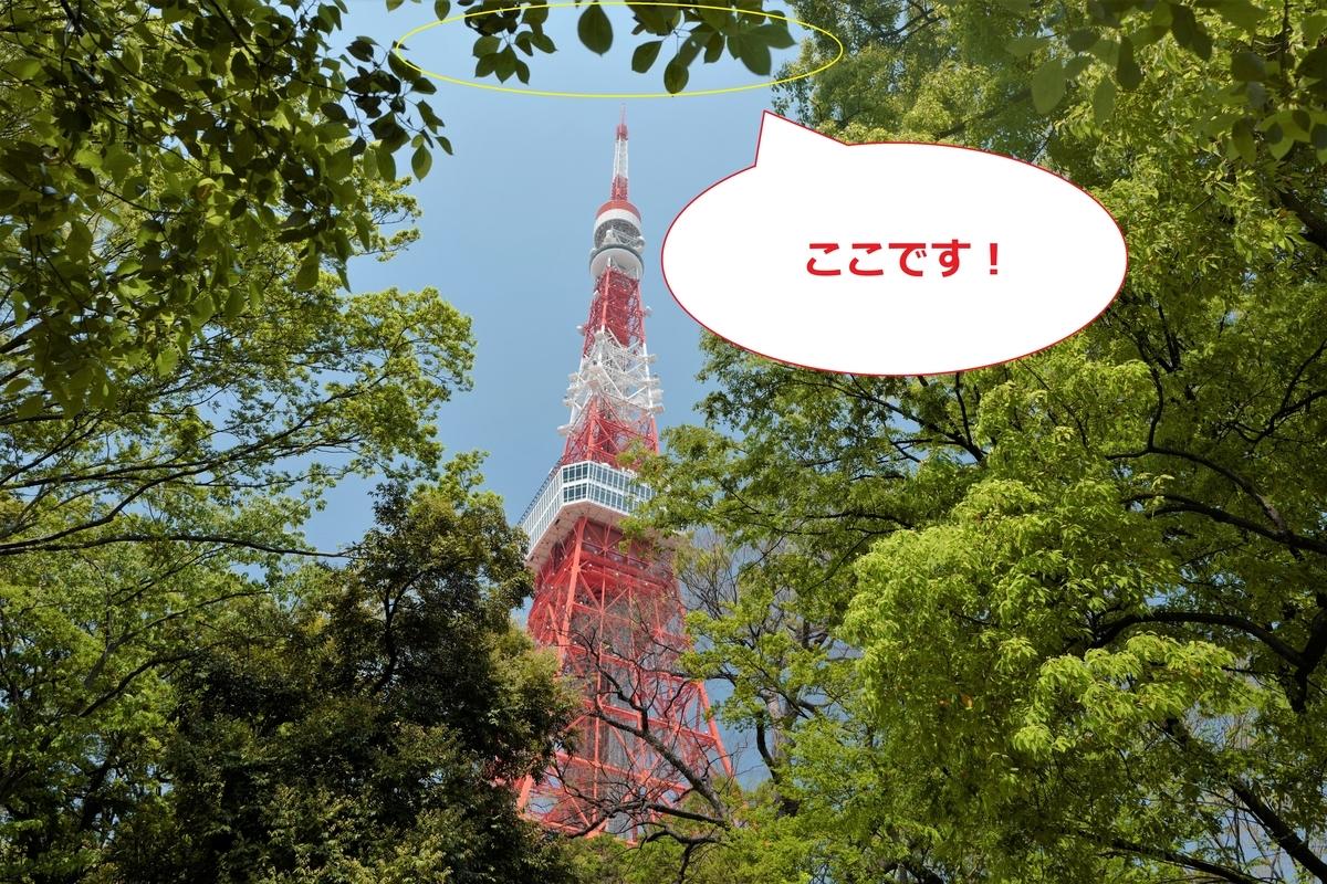 f:id:tatsumo77:20200522175907j:plain