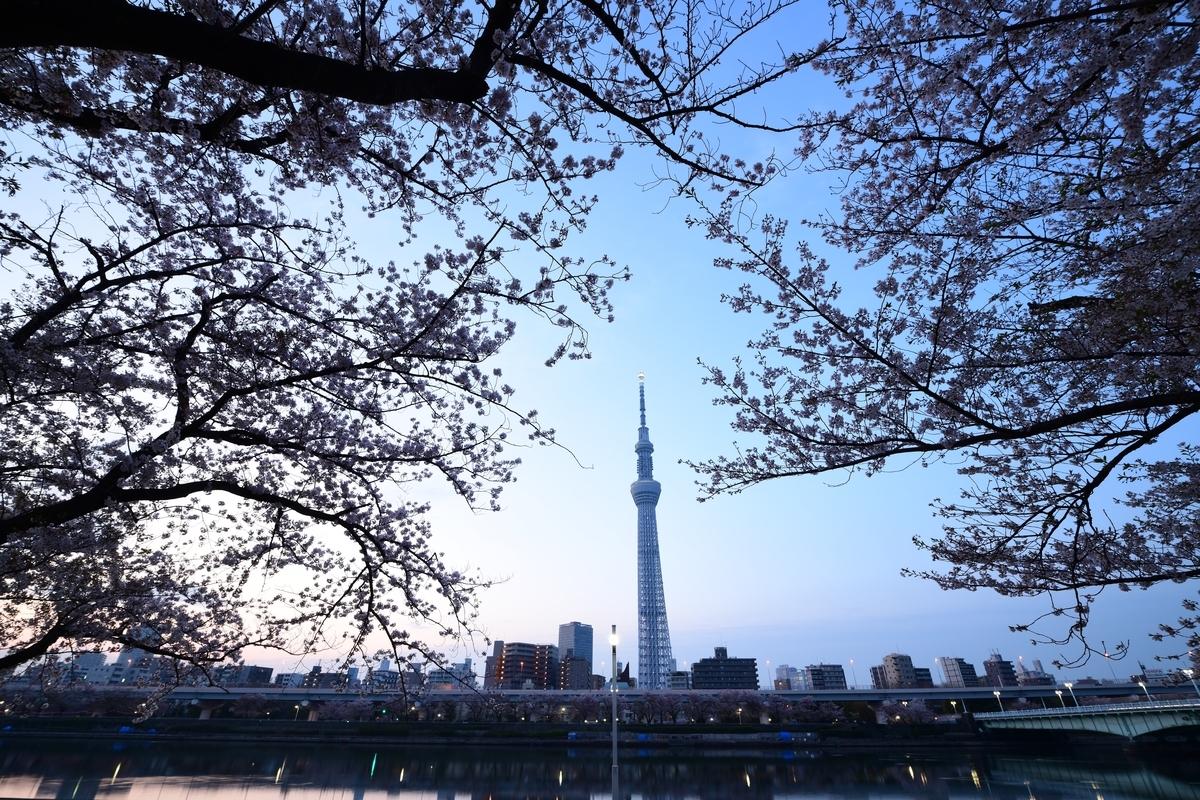 f:id:tatsumo77:20200925220809j:plain