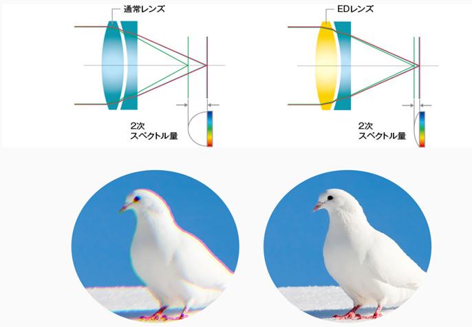 f:id:tatsumo77:20201119043849p:plain