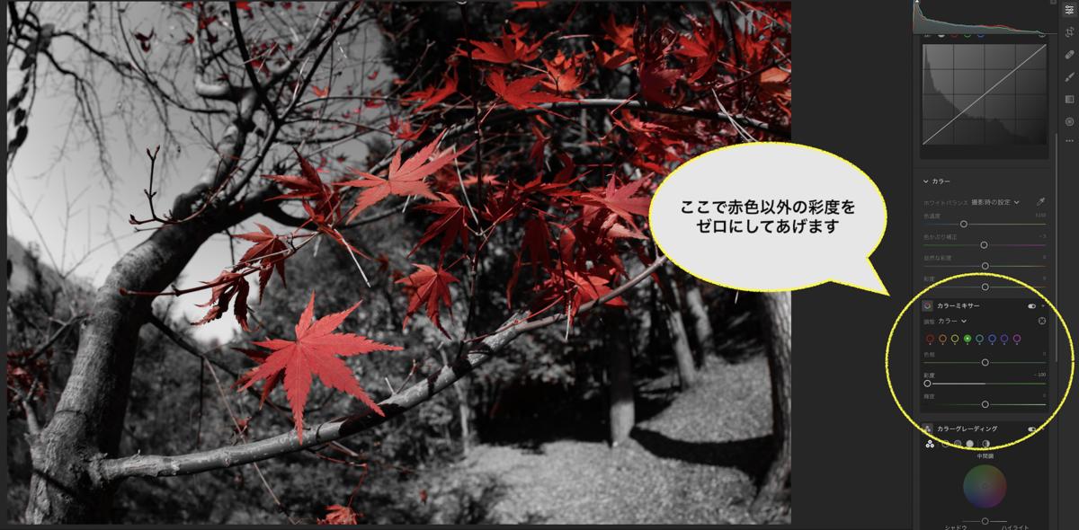 f:id:tatsumo77:20201130075943p:plain