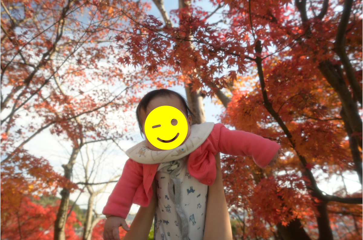 f:id:tatsumo77:20201215221302p:plain