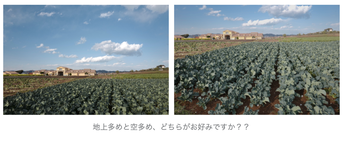 f:id:tatsumo77:20210221203243p:plain