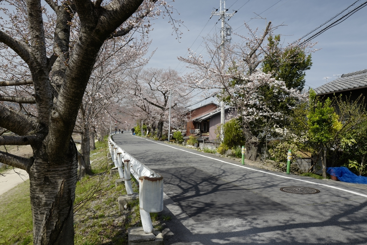 f:id:tatsumo77:20210304071416j:plain