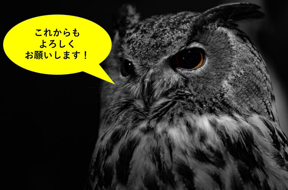 f:id:tatsumo77:20210508181709p:plain