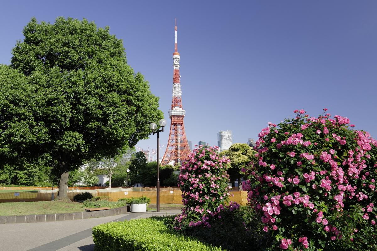 f:id:tatsumo77:20210516230043j:plain