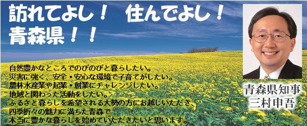 f:id:tatsumori777:20170303093005p:plain
