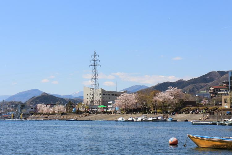 f:id:tatsunoko_yokohama:20190414071755j:plain
