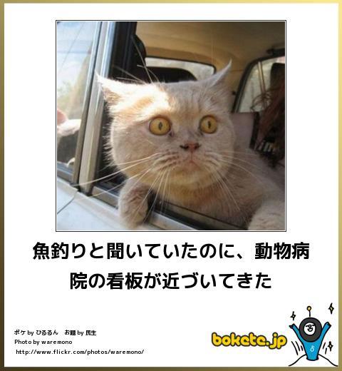 f:id:tatsunori-matsuda:20181102194240j:plain