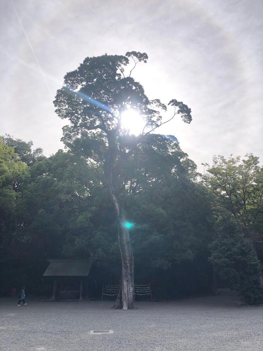 f:id:tatsunori-matsuda:20190614103900j:plain
