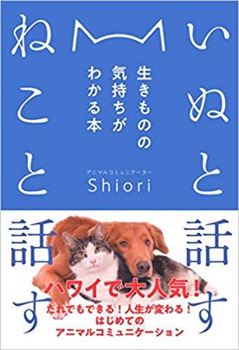 f:id:tatsunori-matsuda:20200113214847j:plain
