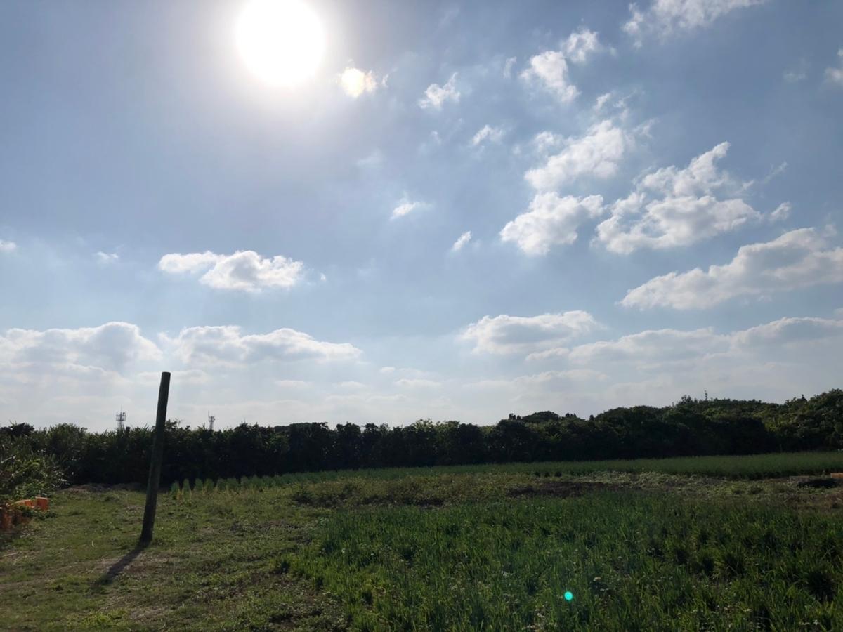 f:id:tatsunori-matsuda:20200319141631j:plain