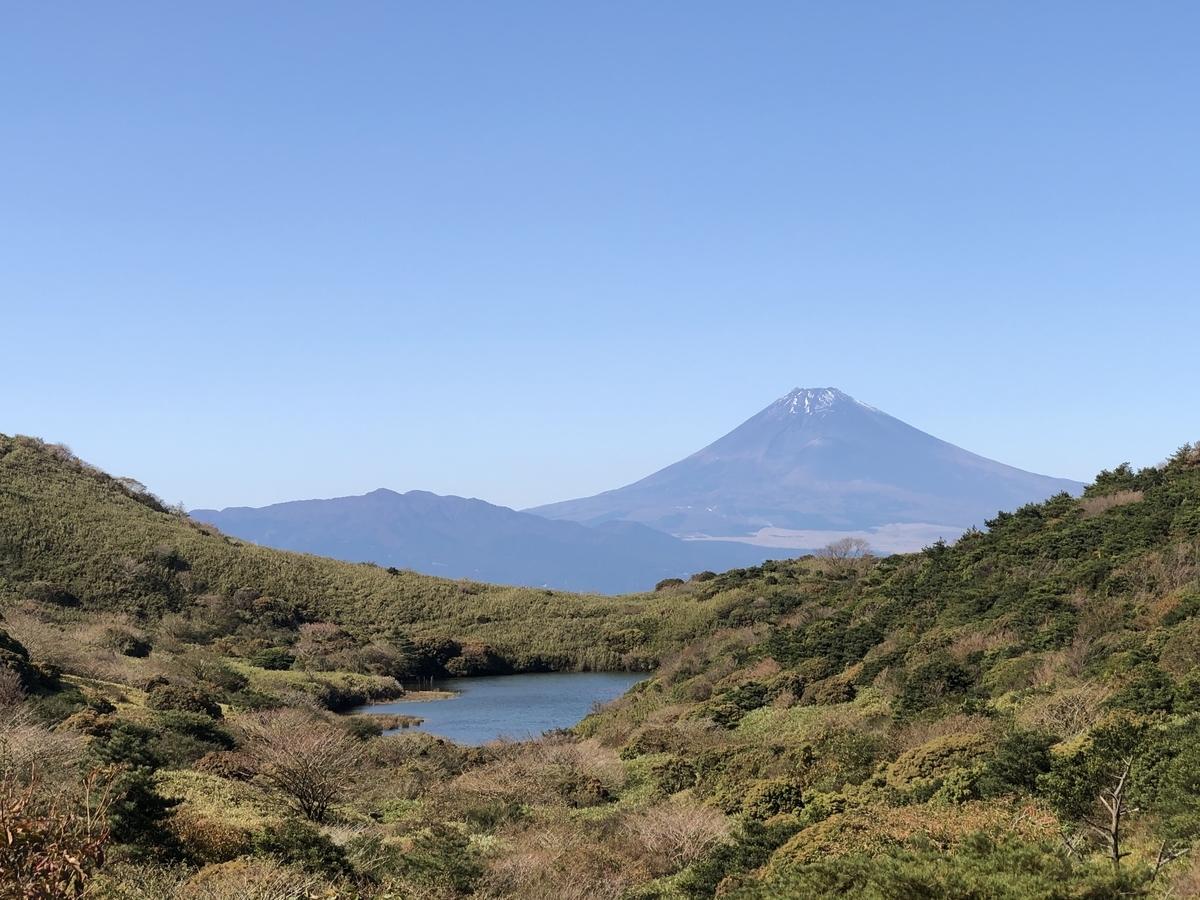 f:id:tatsunori-matsuda:20201102192927j:plain