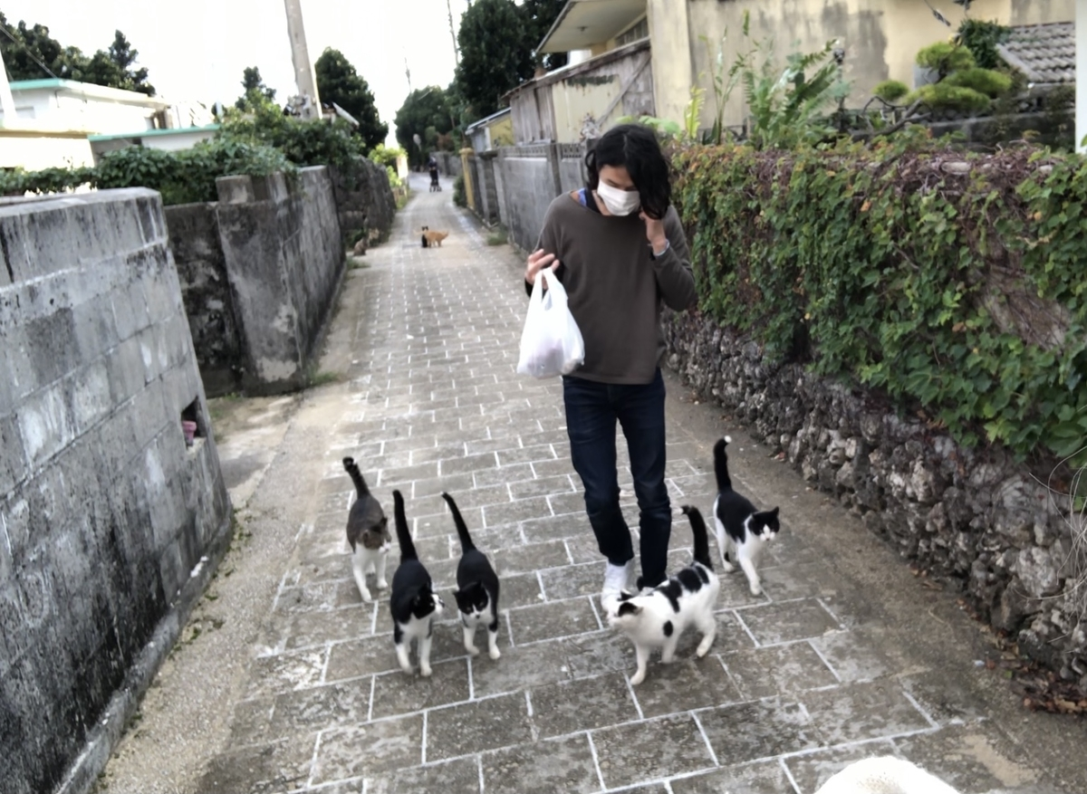 f:id:tatsunori-matsuda:20210106135543j:plain