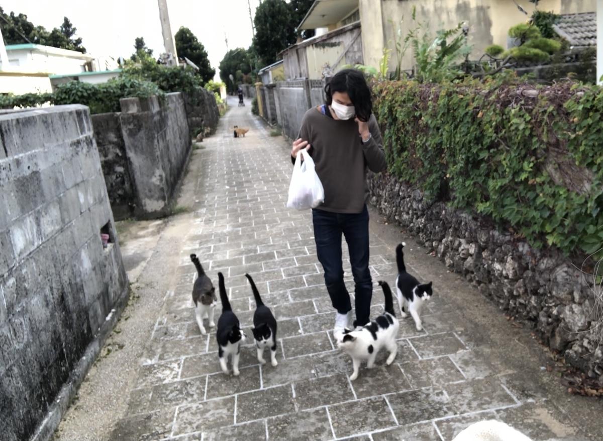 f:id:tatsunori-matsuda:20210619203642j:plain