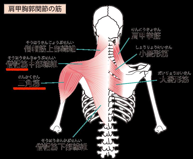 f:id:tatsushi_miyake:20210922124643p:plain