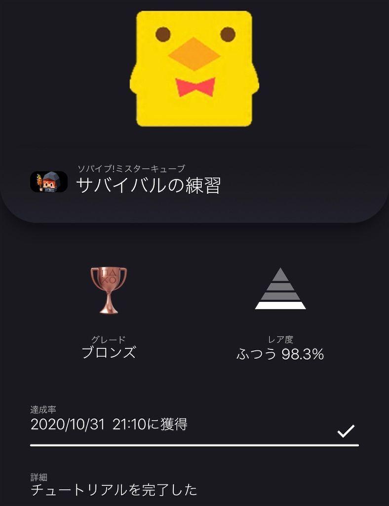 f:id:tatsutatsu2150:20201031211754j:plain