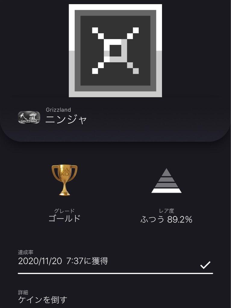 f:id:tatsutatsu2150:20201120232426j:plain