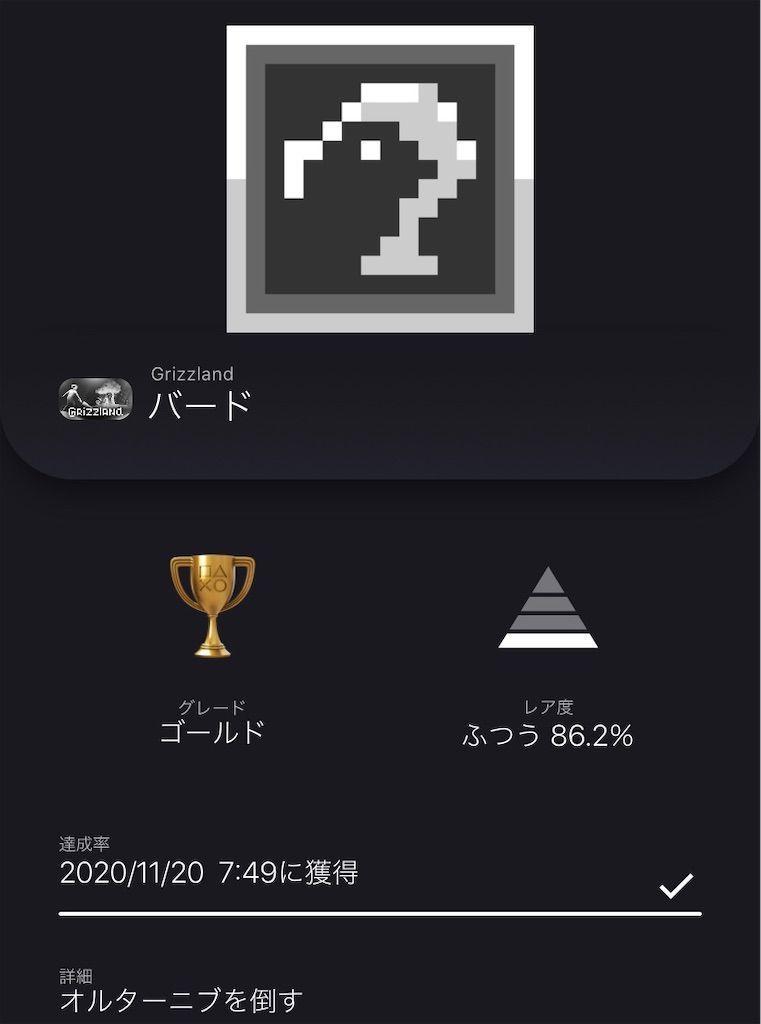f:id:tatsutatsu2150:20201120232432j:plain