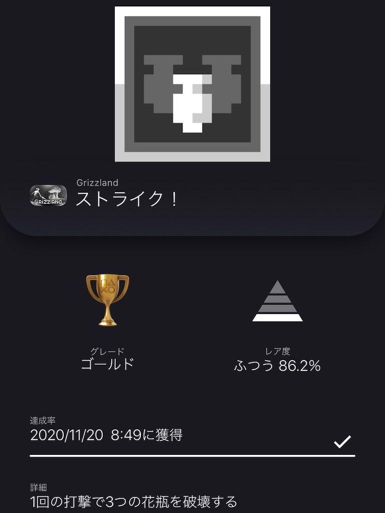 f:id:tatsutatsu2150:20201120232809j:plain