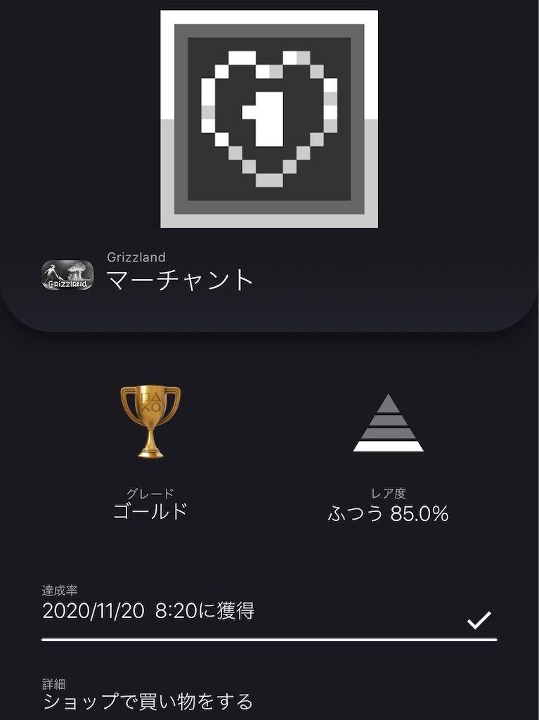 f:id:tatsutatsu2150:20201120232815j:plain