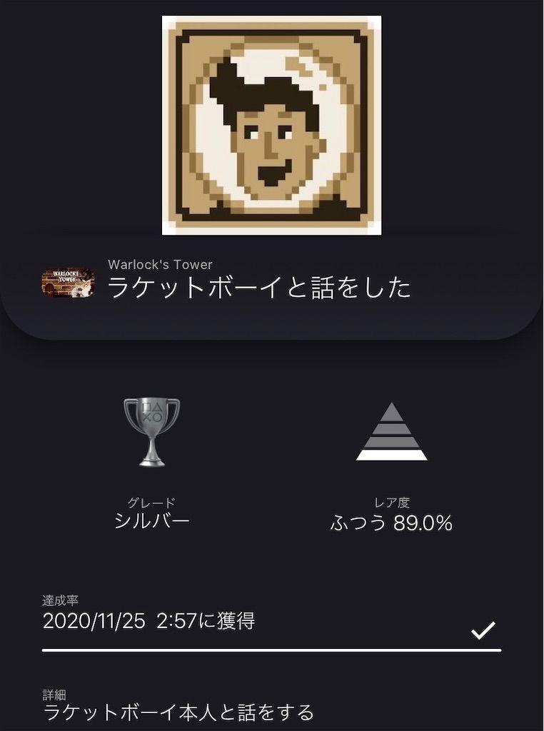 f:id:tatsutatsu2150:20201125025809j:plain