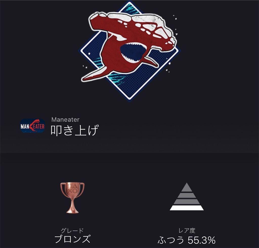 f:id:tatsutatsu2150:20201223060237j:plain